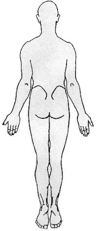 pic-bodypain-back